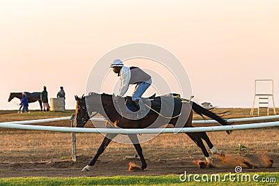 Race Horses Training Dawn Editorial Image
