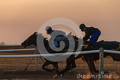 Race Horses Training Dawn Editorial Image