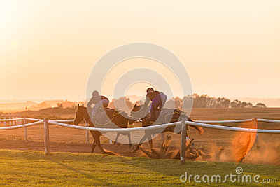 Race Horses Training Dawn Editorial Stock Image