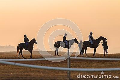 Race Horses Training Dawn Editorial Photo