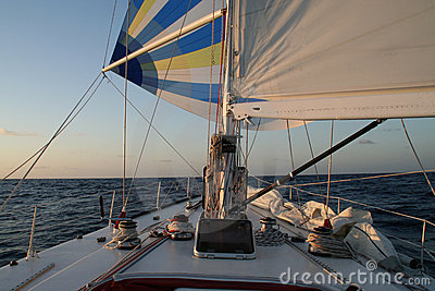Race yacht spinnaker