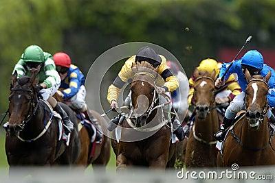 Racing 04