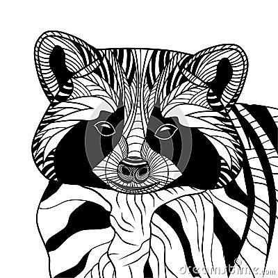 Racoon or coon head  animal illustration