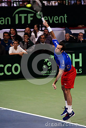 Radek Stepanek-9 Editorial Stock Photo