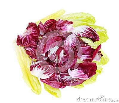 Radicchio and Romance Lettuce