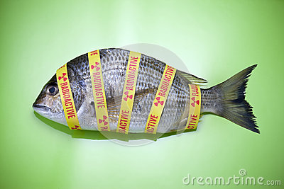Radiation Ocean Fish Food Fukushima