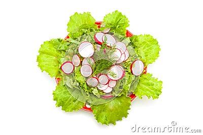 Radish and lettuce