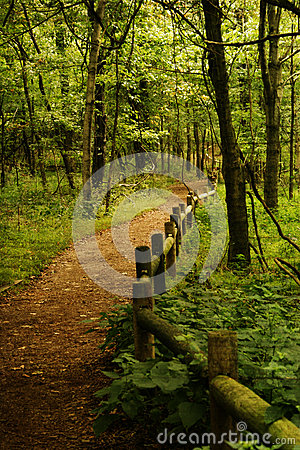Free Radnor Lake In Nashville Tennessee,Wooded Fenced Path In The Forest Royalty Free Stock Photos - 38288448