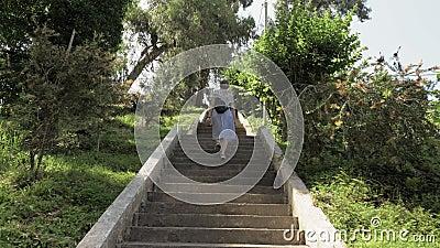 Ragazza che cammina sulle scale in giardino botanico tropicale Batumi, Georgia video d archivio