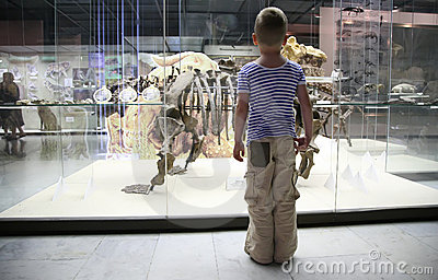 Ragazzo in museo