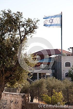 Ragged Israeli Flag