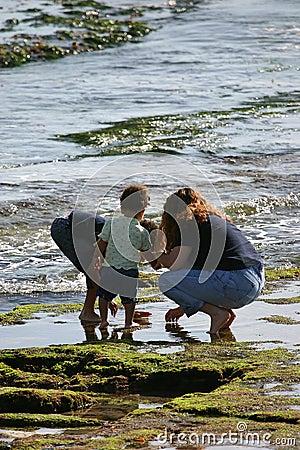 Raggruppamento di marea