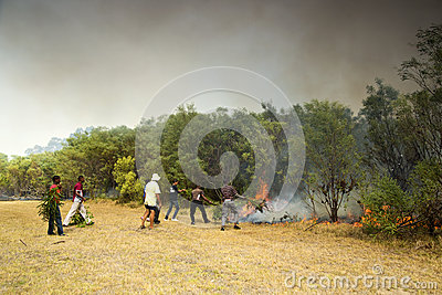 Raging wildfire in Port Elizabeth, South Africa Editorial Stock Photo