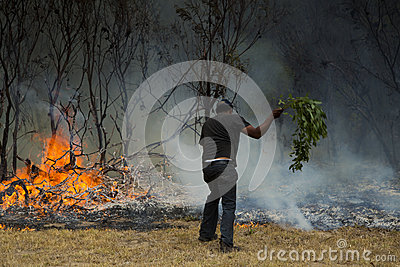 Raging wildfire in Port Elizabeth, South Africa Editorial Image