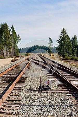 Railroad track junction