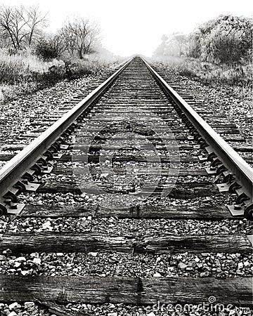 Free Railroad Tracks And Fog. Stock Photo - 21974340