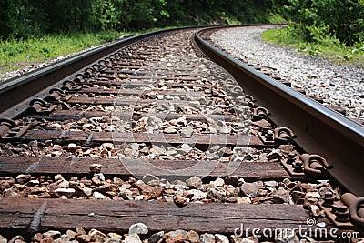 Railroad tracks stretch into forest