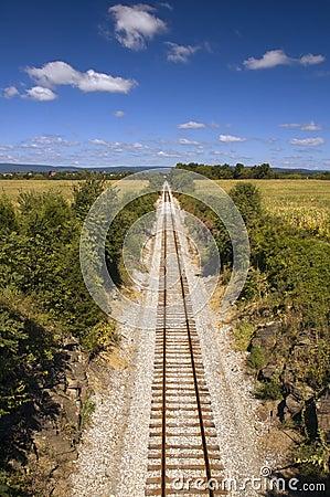 Railroad Tracks Vanish into Distance