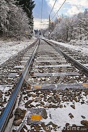 Railroad tracks in winter landscape - vertical