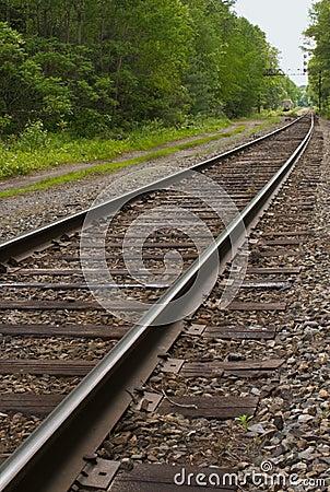 Railroad, train tracks in forest, toward horizon