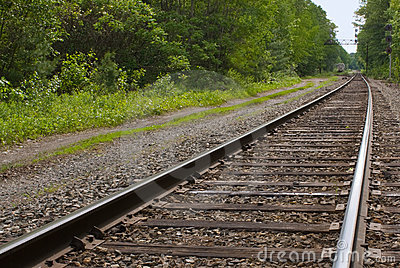 Railroad, train tracks in forest, toward horizon
