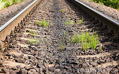 Rails and grass