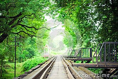 Railway Bridge and Rails with green leaf frame