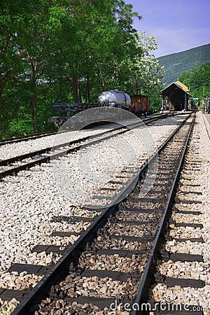 Railway, wagon and locomotive in station