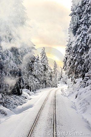 Free Railways In The Snowy Forest At Sunset Stock Photo - 140088990