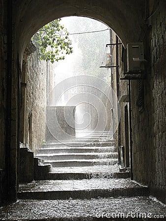 Free Rain Stock Photo - 7803840