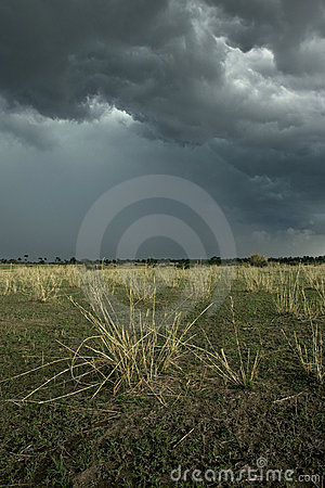 Rain cloud over Africa landscape, Serengeti