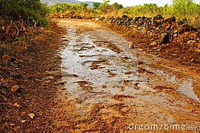 Rain on a dirt road