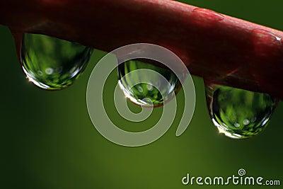 Rain drops-02