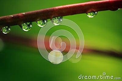 Rain drops-04