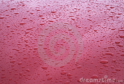 Rain drops on red car hood