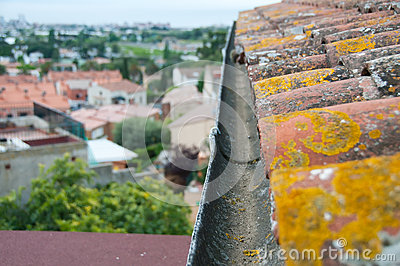 Rain gutter on the old tile roof