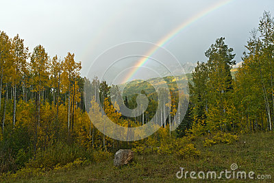 Rainbow Above Fall Aspen Forest Landscape