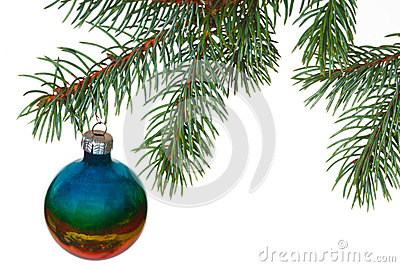Rainbow ball on the branch of Christmas tree