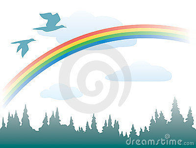 Rainbow, birds and forest