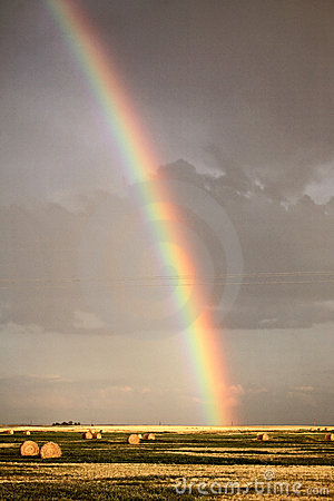 Rainbow Canada