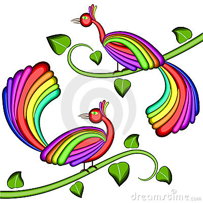 Rainbow color Birds of joy