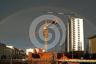 rainbow and crane