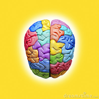 Free Rainbow Creative Brain Psychology Stock Image - 6504471