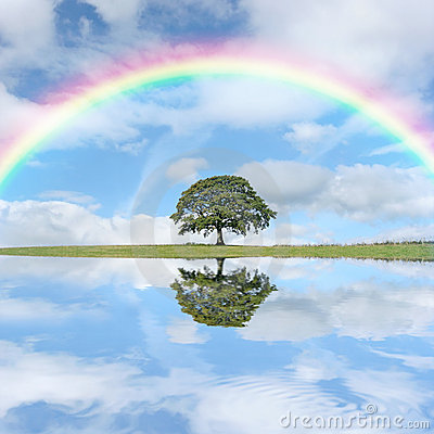 Free Rainbow Day Stock Photography - 4279802