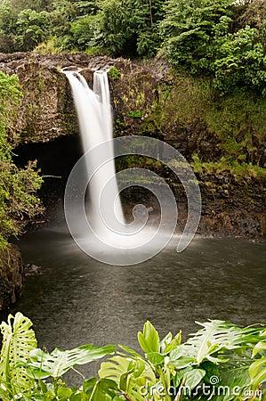 Free Rainbow Falls, Wailuku River Near Hilo, Hawaii Stock Photo - 11201340