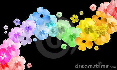 Rainbow Flower Abstract Wave