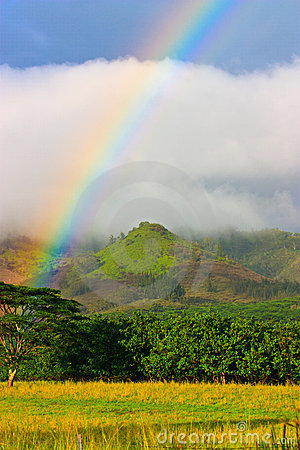 Rainbow, Kauai Hawaii