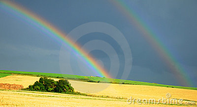 Rainbow over the field