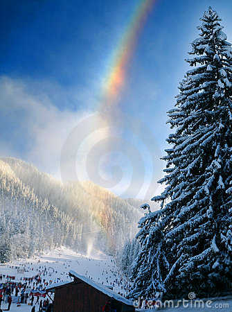 Rainbow over wintry landscape