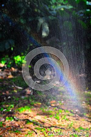 Rainbow through spray of water